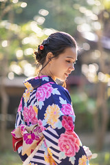 Young  Asian woman in kimono in public park (Apricot Cafe) Tags: img89125 asia asianandindianethnicities canonef85mmf14lisusm japan japaneseculture kimono malaysianethnicity tokyojapan backlit charming cultures day elegance happiness inokashirapark lifestyles lookingovershoulder nature oneperson oneyoungmanonly oneyoungwomanonly outdoors people publicpark selectivefocus smiling springtime sunlight toothysmile tourism tradition traveldestinations waistup women youngadult musashinoshi tōkyōto jp
