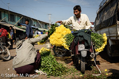 708-Mya-MANDALAY-0859.jpg (stefan m. prager) Tags: asien myanmar blume markt mandalay mandalayregion myanmarbirma mm