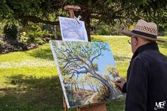 Francesco Parrello - Challenge du 23-1557 (mich53 - thank you for your comments and 5M view) Tags: artistes peintre arts artsmantevillois manteslaville xt2 xf1655mmf28rlmwr france portrait challenge 2018 arbres parc chapeau
