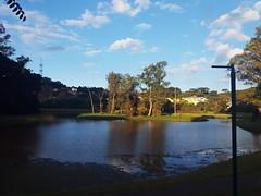 Parque Tingui, Curitiba, Brazil. (jake.sakamoto) Tags: curitiba parquetingui tingui reflexo água rio pr paraná natureza poste árvores park celular