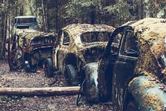 Damn queues (FanFan Babii or just plain Buffan) Tags: que cars vw abandoned forgotten junk junkcar car moss discarded sweden junkheap junkyard woods inthewoods