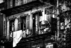 Rêver d'ailleurs.. / Elsewhere dream... (vedebe) Tags: humain human people enfant ville city rue street urbain urban urbanarte architecture balcon fenêtre fenêtres noiretblanc netb nb bw monochrome