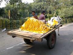 Agra 82 - cart with pure gold (juggadery) Tags: 2015 india uttarpradesh people transport food work man animal