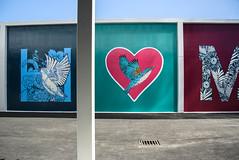 Birds and Hearts (Jocey K) Tags: newzealand nikond750 southisland christchurch sky clouds cbd plymouthlane wall mural artwork thewizardofozbyhayleykingakaflox trees lane