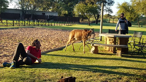 Teambuilding South Africa (24)