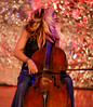 IMG_3547A (Mondo Circus Imaging) Tags: music musician cello cellist performance performer performing performanceart