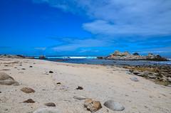 Pacific Grove - Monterey - California (TravelMichi) Tags: californa california travel usa2018 pacificgrove usa us