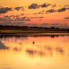 Morning Glory (Ed Rosack) Tags: usa landscape calm nature mist hires ©edrosack panorama florida bird lake dawn cloudy olympus cloud mims highres sky waterscape sunrise centralflorida water fog loughmanlake explore
