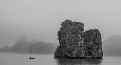 Halong Bay (Nikhil Ramnarine) Tags: vietnam halongbay catbaisland sea limestonekarst karstlandscape boat travel nikon d500