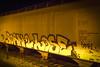 Bord 2 Lose (Rodosaw) Tags: lurrkgod chicago graffiti documentation street art graffitiart born 2 lose awal