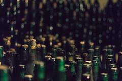 Bottiglie (michelangelomusso) Tags: infernot monferrato vino wine cantin italy sony sonya7m2 weekend mondoviphoto rosso