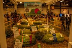 NC State Fair 2018 (73) (tommaync) Tags: ncstatefair2017 nc northcarolina statefair 2017 october nikon d40 raleigh agriculture food displays contests signs