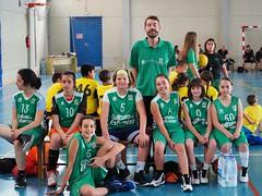 Torneo Escolar 2018 (20/05/18) (Club Baloncesto Elda) Tags: