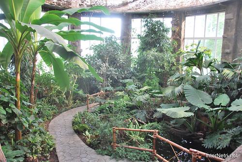 Екзотаріум Ботанічного саду імені Гришка, Київ InterNetri  Ukraine 08