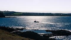 Kiama (Darren Glazer) Tags: kiama sillhouette boating coastal seascape australia nikon tamron