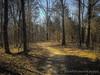 Evidences of Salvation by James Smith (Wretched, Saved by Grace (100% God, 0% Me)) Tags: johnninetwentyfive salvation park parklands trees god landscape christian truth gold sunset life