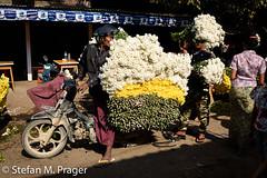 708-Mya-MANDALAY-0854.jpg (stefan m. prager) Tags: asien myanmar blume markt mandalay mandalayregion myanmarbirma mm