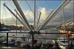 braccia possenti (imma.brunetti) Tags: genova liguria acquario bigo mare barche panorama balaustra nuvole porto
