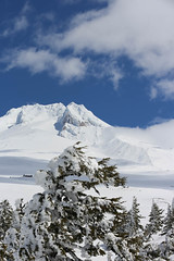 QI8A1364 - Copy (komissarov_a) Tags: mthood oregon or usa color nature danger beauty skiing ski resort freestyle snowboarding slopes pucci magicmile palmer april pool sauna sunset slope snowstorm iceroad 2018 komissarova streetphotography rgb adrenaline canon 5d mark3 wild weather snow sun dangerous rocks extreme bruno timberline lodge view south end season training sports team гора маунтхуд горнолыжный бесснежная куррорт отель орегон сша осень экстрим адреналин жарко солнце ухты скорость апрель конецсезона