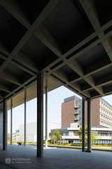 Pilotis of Tokyo University of Science, Library (東京理科大学 葛飾キャンパス 図書館棟) (christinayan01 (busy)) Tags: tokyo japan architecture building perspective grass ground library university
