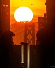 San Francisco Sunrise (davidyuweb) Tags: california street sanfrancisco sunrise bay bridge luckysnapshot 三藩市