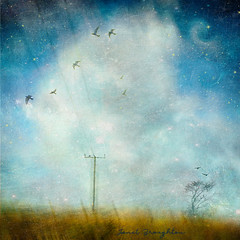 Silence, Shattered... (Janet_Broughton) Tags: edge50 lensbaby landscapesofdreams textured birds dreamy fields