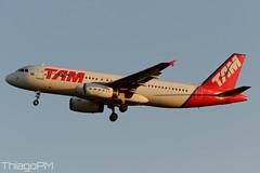 PT-MZL TAM (Thiago Pereira Machado) Tags: tam brasilia bsb airbus latam ptmzl