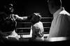 26370 - Hook (Diego Rosato) Tags: gancio hook pugno punch boxe boxing pugilato ring match reunion boxelatina nikon d700 2470mm tamron bianconero blackwhite rawtherapee