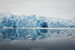 Cierva-Cove-Antarctica-6 (A. Gosewehr) Tags: antarktis ciervacove antarctica icecove blue