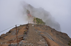 Pico Arieiro (Barbara Walsh Photography) Tags: picoarieiro madeira fog hiking adventure portugal travel nature