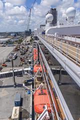 Dockside Activity (dcnelson1898) Tags: travel vacation cruise hollandamericaline oosterdam ship atlanticocean mediterraneansea fortlauderdale florida dock