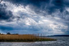 'I think we should go back!' - Usedom, Mecklenburg-Vorpommern (dejott1708) Tags: landscape clouds water sea lagoon reed hdr usedom mecklenburgvorpommern