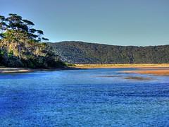View across the lake II (elphweb) Tags: hdr highdynamicrange nsw australia beach water lake sea ocean tree trees forest bush wood woods