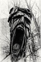 Grimace (patoche21) Tags: autriche tyrol zillertal artmoderne bois homme monochrome nb noiretblanc sculpture statue visage patrickbouchenard blackandwhite bw art modern austria carving wood face