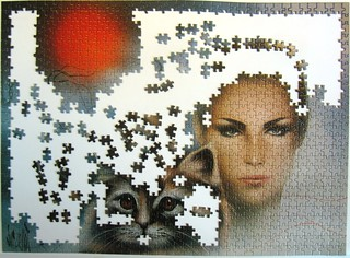 Vision (Luc Genot)