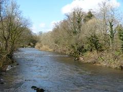 Kirkby Lonsdale - River Lune 180405 3 (maljoe) Tags: kirkbylonsdale cumbria rnblune