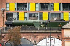 _DSC5156 (BobPetUK) Tags: leeds 2018 flyingscotsman steam locomotive lner 60103 railway