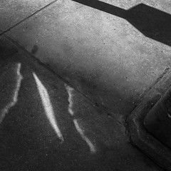 Invasion (i2pixel) Tags: abstract pavement bnw light shadow