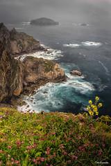Peñes ,Gozón, Asturias (ton21lakers) Tags: mar marina rocas playa paisaje pedreru peñas piedra verde vegetacion asturias spain toño escandon canon tamron niebla bruma sedas