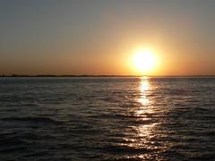 sun going to take a bath in River Elbe (achatphoenix) Tags: riverelbe elbe ferry fähre elbfähre glückstadt wischhafen sun sunset coucherdusoleil water wasser eau aqua