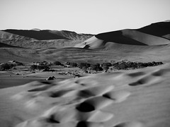 Textures 3 (Melvinia_) Tags: olympusomdem1 namibia namibie africa afrique afriqueaustrale desert désert sossusvlei dunes sunsetlight shades ombres sand sable landscape paysage emptiness