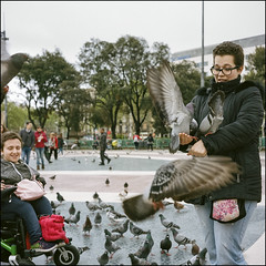 Fun with Pigeons - Barcelona (magnus.joensson) Tags: spain barcelona april sailing the mediterranean rolleiflex 35 carl zeiss tessar 75mm kodak porta 400 c41 6x6 medium format