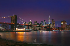 Night Lights (fesign) Tags: newyorkcity bridgebuiltstructure newyorkstate night brooklynbridge brooklynnewyork dusk illuminated nopeople oneworldtradecenter skyline architecture purple businessfinanceandindustry city citylife cityscape colourimage development downtown famousplace growth horizontal idyllic internationallandmark manhattannewyorkcity manhattanfinancialdistrict officeblockexterior outdoors photography reflection rivereast sky suspensionbridge tourism tranquility travel traveldestinations usa urbansprawl pink sunset