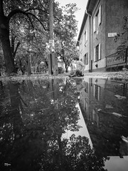 Mirrorcity (un2112) Tags: laowa kids son blackandwhite bw monochrome budapest gx80 rain august wekerle hungary