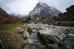 Har Ki Dun (_Amritash_) Tags: harkidun river rocks boulders mountain campsite trek longexposure spring springblooms cloudy weather travel travelinindianhimalayas landscape landscapes himalayanlandscape uttarakhand