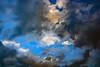 Enlightenment Now (Ciceruacchio) Tags: clouds nuages nuvole sky ciel cielo light soir evening sera lumière luce blue blu bleu black noir nero enlightenment reason science humanism stevenpinker rome roma nikon groupenuagesetciel
