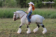 Breyer Traditional - Shire Gelding 1793 with Breyer TR doll (capricornmeadow) Tags: breyer model horse shire traditional