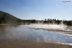 Vapores de Volcan - volcano vapors (pniselba) Tags: usa estadosunidos yellowstone yellowstonenationalpark parquenacional parquenacionalyellowstone geysir geiser geyser nationalpark wyomming