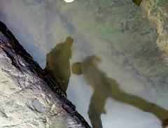 Leap of faith (Onlyshilpi) Tags: inverted reflected water reflection mobilephotography mumbai bandra