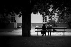 PLTI082017_60R-BYN_FLK (Valentin Andres) Tags: bw baths blackwhite blancoynegro byn escena poland polonia real royal varsovia warsaw white baño black blackandwhite park parque romantic romántico łazienkipark